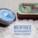 """Menthes rafraîchissantes """"Pointes d'iceberg"""""""