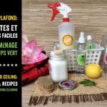 Du sol au plafond: 5 recettes et astuces faciles pour un ménage de printemps vert