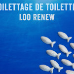 A toilet cleaner recipe for a true Loo Renew!
