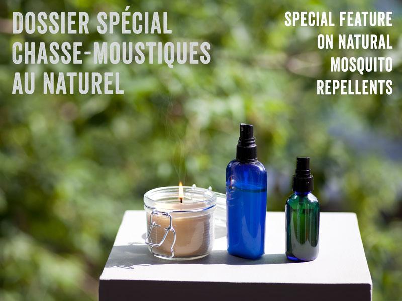 recettes chasse-moustiques
