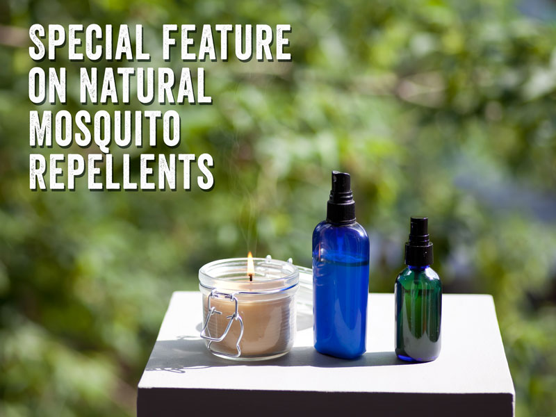 recipe insect repellent