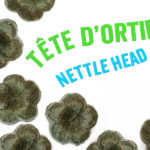 Get a Nettle Head with this solid shampoo recipe